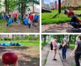 Voronezh apple orchard and volunteer day